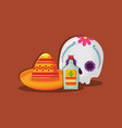 mexican sugar skull vector image