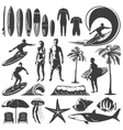 Surfing Icon Set vector image vector image