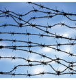 Barbed Wire Against Sky2 vector image vector image
