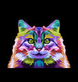 colorful norwegian forest cat on pop art style vector image vector image