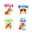 corgi stickers emoticon set vector image vector image