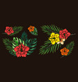 exotic floral colorful composition vector image