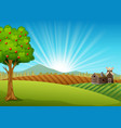 farm landscape with green field and sunrise vector image