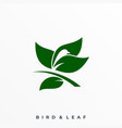 bird leaf template vector image vector image