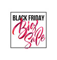 black friday handwritten lettering paint brush vector image