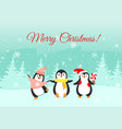 christmas funny penguins vector image