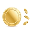 Empty surface of the golden finance isolated coin vector image vector image