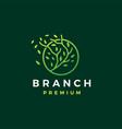 three branch circle leaf tree logo icon vector image vector image