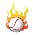 2008641 baseball vector image