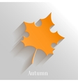 Abstract Orange Maple Leaf on White Background vector image vector image
