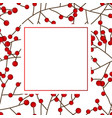 red berry christmas on white banner card vector image vector image