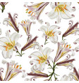 beautiful white lilies flowers in watercolor style vector image vector image