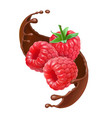 chocolate splash and raspberry realistic berry vector image vector image