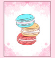 delicate card with colored drawing of macaroon vector image vector image