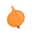onion isolated vegetable cartoon badge vector image