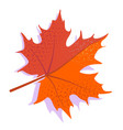 orange maple leaf with shadow isolated on vector image