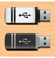 USB flash drives vector image vector image