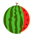 watermelon icon flat style vector image vector image