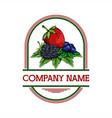 berries badge vector image