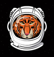cool tiger on astronaut helmet print for t shirt vector image