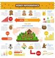 Honey Infographics Set vector image vector image