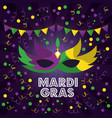 mardi gras carnival masks with feathers pennant vector image