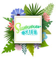 tropical summer sale vector image vector image