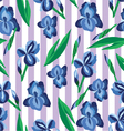 floral pattern with irises on the stripe vector image