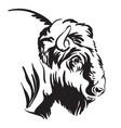 abstract contour portrait bison vector image