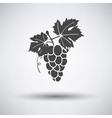 Grape icon on gray background vector image