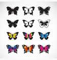 group butterflies design on white background vector image vector image