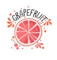 hand draw grapefruit half vector image vector image