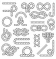 nautical rope set in flat style decorative element vector image