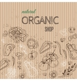 Organic shop concept with vegetables on cardboard vector image vector image