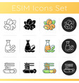 soy plants icons set vector image