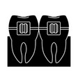 tooths and dental care vector image