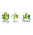 cactus logo templates design set natural products vector image
