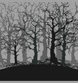 cartoon gloomy forest background of trees without vector image