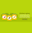 kitchen spices banner horizontal concept vector image