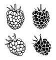 set of the raspberry icons isolated on white vector image