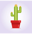 decorative cactus with prickles on white vector image vector image