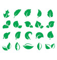 green leaf icons isolated on a white background vector image vector image