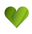 Green Leaf Veins Texture Heart Shaped Earth Day vector image vector image