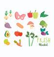 healthy food ingredient fresh market balance vector image
