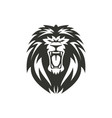 lion symbol or sign on white vector image vector image