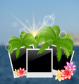 Set photo frame with palms flowers on blurred