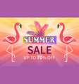 summer sale proposition discount up to 70 percent vector image vector image
