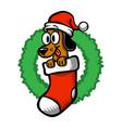 cartoon dog santa hat christmas stocking vector image vector image