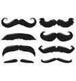 Different types of mustache vector image vector image