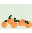 Fresh Peach fruit vector image